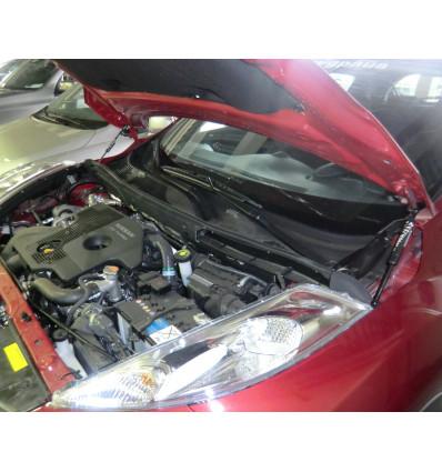 Амортизатор (упор) капота на Nissan Juke BD09.01