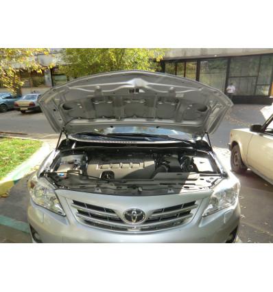 Амортизатор (упор) капота на Toyota Corolla BD14.01