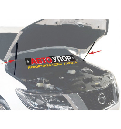 Амортизатор (упор) капота на Nissan Pathfinder UNIPAT021