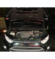 Амортизатор (упор) капота на Ford Ecosport BD02.08