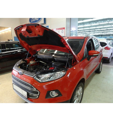 Амортизатор (упор) капота на Ford Ecosport KU-FD-ES00-00