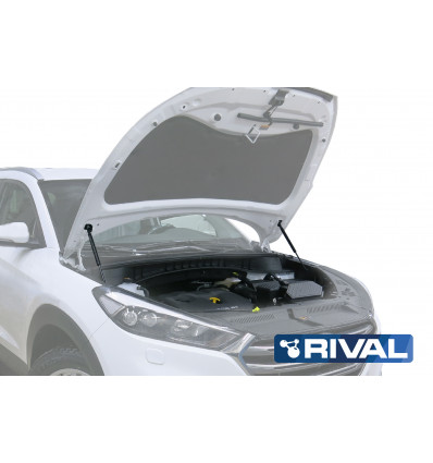 Амортизатор (упор) капота на Hyundai Tucson А.2306.1