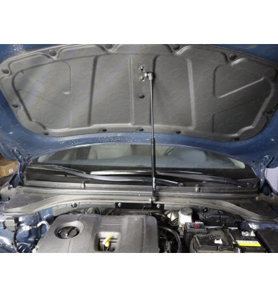 Амортизатор (упор) капота на Hyundai Elantra HYUNELA16-01Y