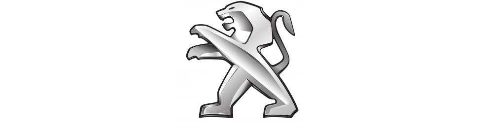 Круиз-контроль на Peugeot