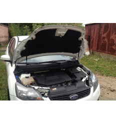 Амортизатор (упор) капота на Ford Focus 2 BD02.02