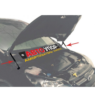 Амортизатор (упор) капота на Ford Focus 3 UFDFOC021