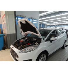 Амортизатор (упор) капота на Ford Fiesta KU-FD-FI06-00