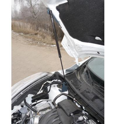 Амортизатор (упор) капота на Nissan Juke NISJUK2WD14-10Y
