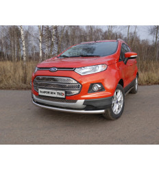 Защита передняя нижняя на Ford EcoSport FORECOSPOR14-02
