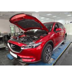 Амортизатор (упор) капота на Mazda CX-5 KU-MZ-CX05-02