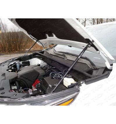 Амортизатор (упор) капота на Toyota Highlander TOYHIGHL17-25Y