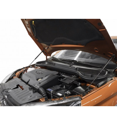 Амортизатор (упор) капота на Lada (ВАЗ) Vesta ULAVES021