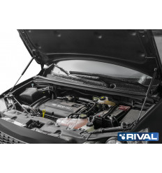 Амортизатор (упор) капота на Chevrolet Aveo A.ST.1002.1