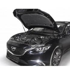Амортизатор (упор) капота на Mazda 6 A.ST.3802.1