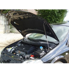 Амортизатор (упор) капота на Nissan Primera 8231.5600.04