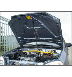 Амортизатор (упор) капота на Chevrolet Lanos 8231.5200.04/2904.5200.04