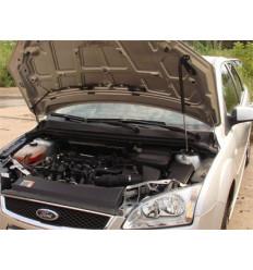 Амортизатор (упор) капота на Ford Focus 2 8231.5400.04/8231.5410.04