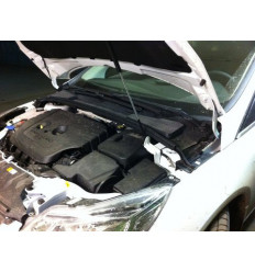 Амортизатор (упор) капота на Ford Focus 3 8231.7700.04