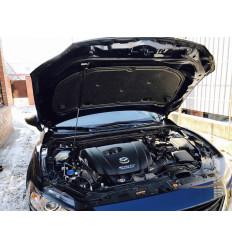 Амортизатор (упор) капота на Mazda 3 8231.9100.14