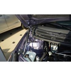 Амортизатор (упор) капота на Lifan X50 PTU 29.06
