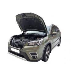 Амортизатор (упор) капота на Subaru Forester 07-04