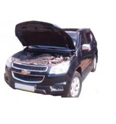 Амортизатор (упор) капота на Chevrolet Trailblazer 14-02