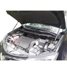 Амортизатор (упор) капота на Toyota RAV 4 15-03