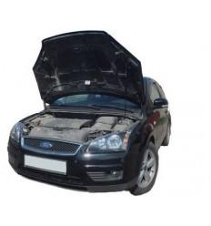 Амортизатор (упор) капота на Ford Focus 2 03-02/1