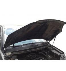 Амортизатор (упор) капота на Ford Focus 2 03-02/2