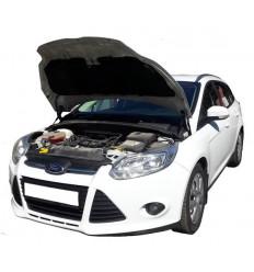 Амортизатор (упор) капота на Ford Focus 3 03-08
