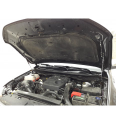 Амортизатор (упор) капота на Ford Ranger 03-01