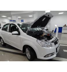 Амортизатор (упор) капота на Chevrolet Aveo KU-RV-R300-00