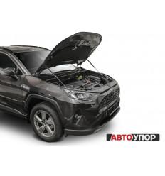 Амортизатор (упор) капота на Toyota RAV 4 UTORAV031