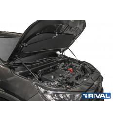 Амортизатор (упор) капота на Toyota RAV 4 A.ST.5714.1
