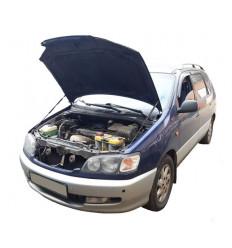 Амортизатор (упор) капота на Toyota Ipsum 15-09